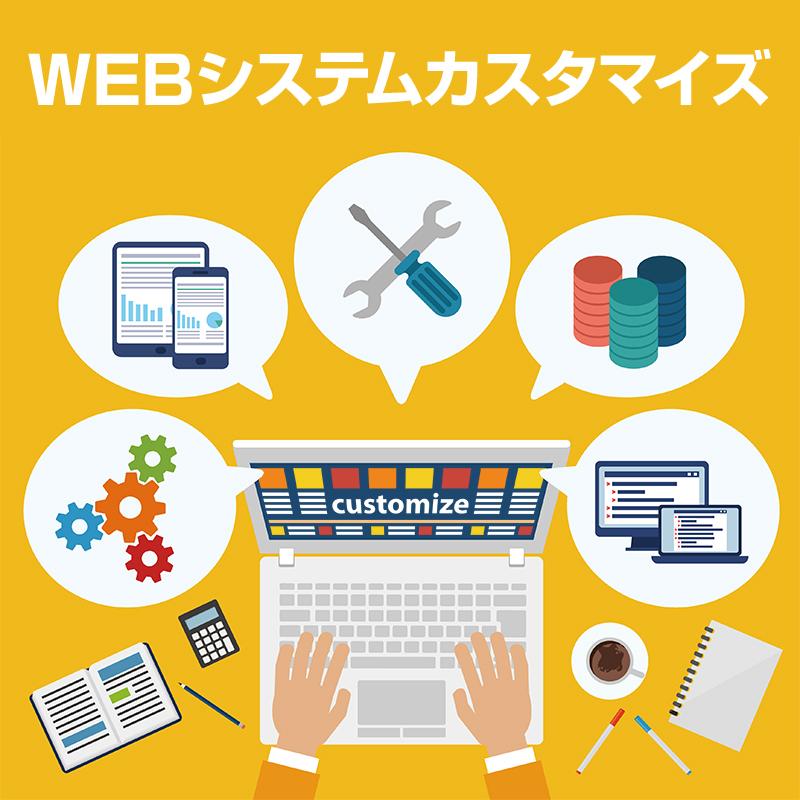 WEBシステムカスタマイズ